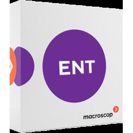 Macroscop Enterprise - включён функционал для крупных систем - лицензия на подключение 1 камеры